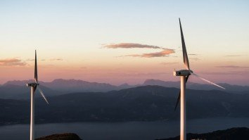 China spearheads global wind power growth: report
